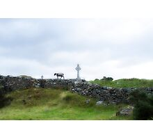 Sheep and Celtic Cross Photographic Print