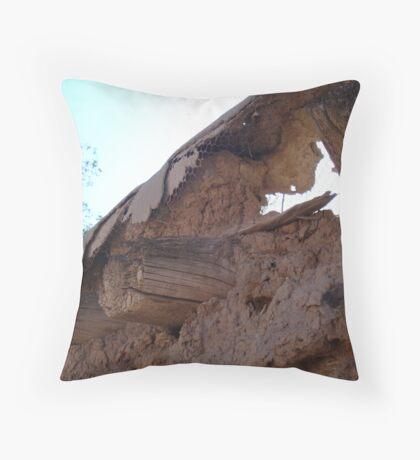 Old Adobe Throw Pillow