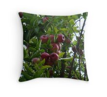 Apple Delight! Throw Pillow