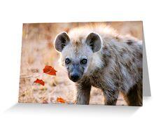 YEAH, I AM WATCHING YOU! - Spotted Hyaena - Crocuta crocuta Greeting Card