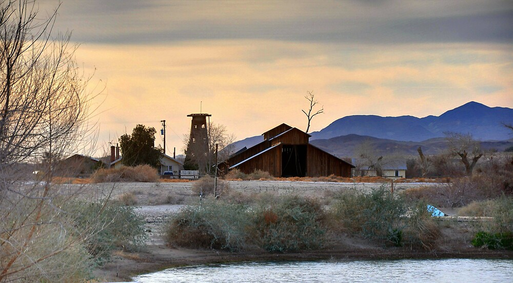 Camp Cady, CA by Herman Hodges