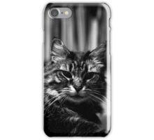 James the Cat - Portrait - 1 iPhone Case/Skin