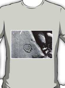 Skullseries - Grunge photo (experiment) T-Shirt