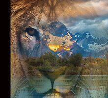 Lion by KKitchen
