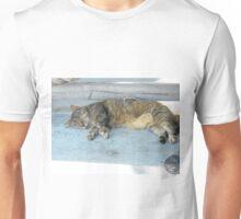Key West, cute sleeping cat Unisex T-Shirt