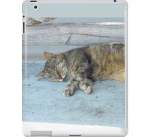 Key West, cute sleeping cat iPad Case/Skin