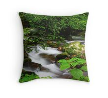 HIDDEN MOUNTAIN STREAM Throw Pillow