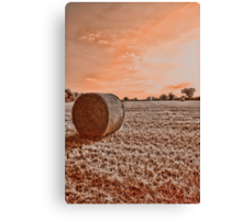 Norfolk Summer Fields UK Canvas Print