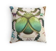 Beetle Collection Throw Pillow