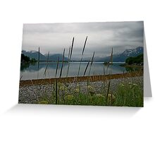 Prince William Sound2 Greeting Card