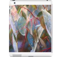 Drought Relief iPad Case/Skin