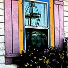 window box_2 by Lynne Prestebak
