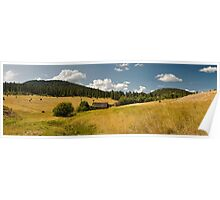 High Mountain Meadow Poster