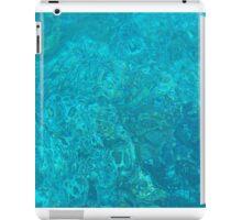 Underwater picture iPad Case/Skin