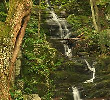 Tillman Ravine and Buttermilk Falls by Stephen Vecchiotti