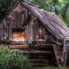 Weathered Shed by Terence Russell