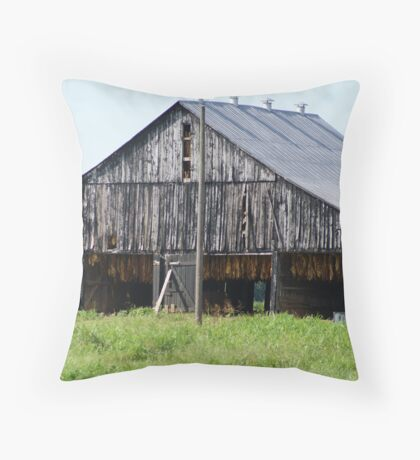 The Weathered Old Barn Throw Pillow