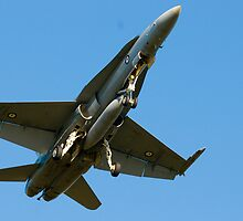 F-18 Hornet by Richie Wessen