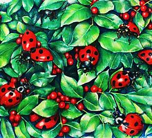 Ladybugs in the Hedge by heidicsmith