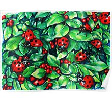 Ladybugs in the Hedge Poster