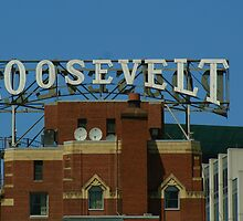 The Roosevelt Hotel by Elizabeth Bravo