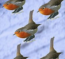 Skiing Robins by simpsonvisuals