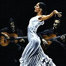 Concentracion del funcionamiento del flamenco by Richard Young