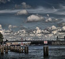 Rotterdam Skyline, erasmus Bridge. by cocoon