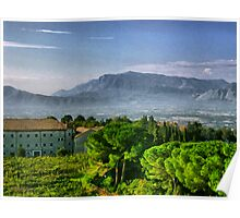 Vineyard in Monte Cassino Poster
