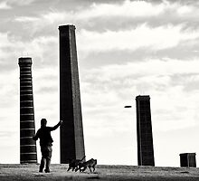 Frisbee between the chimneys by Martin Healey