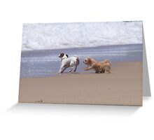 Playful Beach Pair Greeting Card
