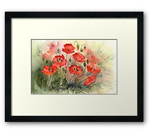 Field Poppies Framed Print