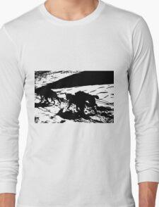Sled Dogs in Prescott Park, Portsmouth, NH Long Sleeve T-Shirt