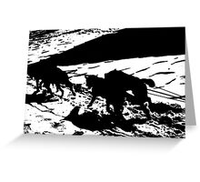 Sled Dogs in Prescott Park, Portsmouth, NH Greeting Card