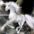 Unicorn Run by Shanina Conway