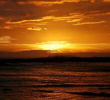 Morning Wave III by Richard Heath