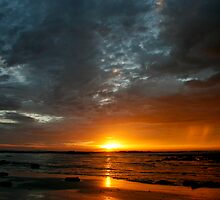 Morning Shower II by Richard Heath