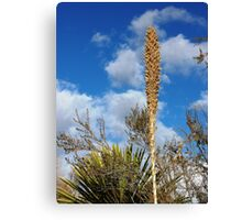 HEARTY DESERT SURVIVOR Canvas Print
