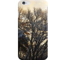 Winter Dawn is an Ice Queen iPhone Case/Skin