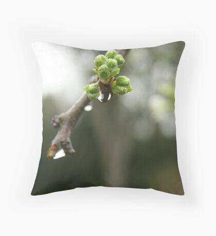 Rain buds Throw Pillow