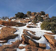 Canyonlands in the Winter by Susan Russell