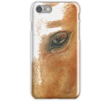 The Eye in Equine iPhone Case/Skin