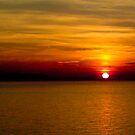 Sundrop in the Ocean by Lyndy