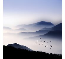 Flying Over The Fog Photographic Print