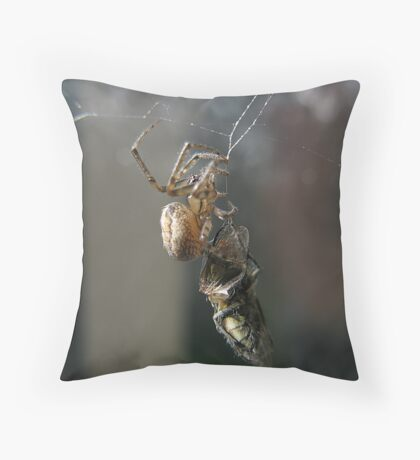 "'""Will you walk into my parlour?"" said the Spider to the Fly...' Throw Pillow"