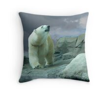 Ready for Blue Skies Throw Pillow