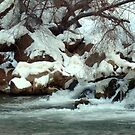 Stream with Snowy Banks in Arizona by Susan Russell