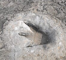 Dinosaur Footprint at Dinosaur Valley State Park in Texas by Susan Russell
