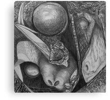 Curiosity's Cabinet  Canvas Print