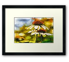 Summer Memories Framed Print
